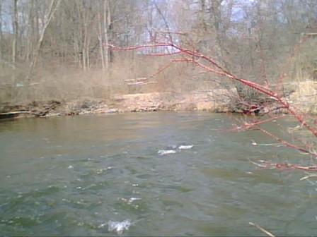 Creek1_2